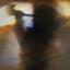 Animal Collective - Fall Be Kind album artwork