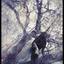 Аватар для DoomedShewolf