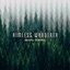 Aimless Wanderer - Single