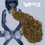 Santigold - Santigold album artwork