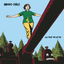 Indigo Girls - All That We Let In album artwork