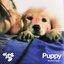 Puppy - Single