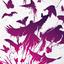 Аватар для xXimmortalXx