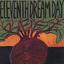 Eleventh Dream Day - Beet album artwork