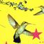 Avatar de ornitologia