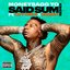 Said Sum (feat. City Girls & DaBaby) [Remix]