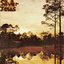 Silver Jews - Starlite Walker album artwork