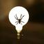 Аватар для Tarrrantino