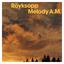 Röyksopp - Melody A.M. album artwork