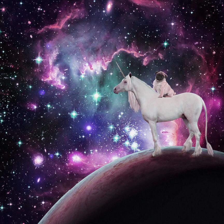 Единороги в космосе картинки