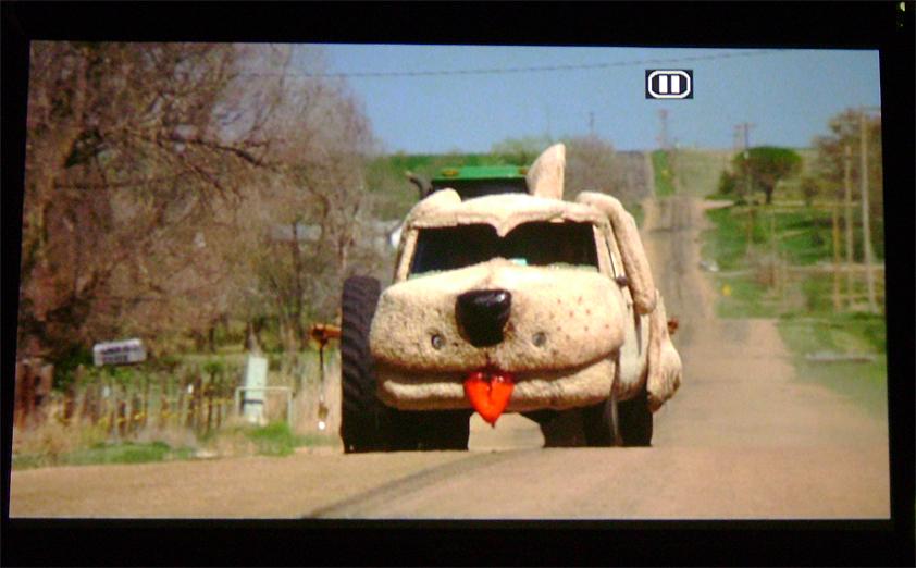 тупой и еще тупее машина собака картинки его