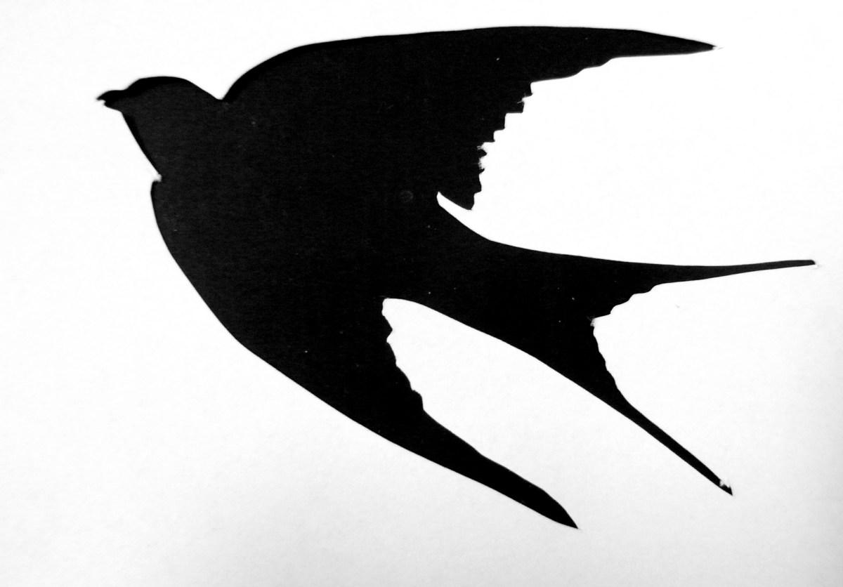 конечно силуэты птиц картинки раскрывать