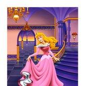Princess Aurora, the sleeping beauty