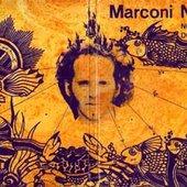 Marconi Notaro - No Sub Reino Dos Metazoários (Complete Album Cover)