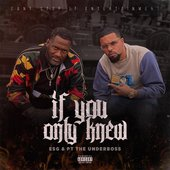 If You Only Knew (feat. PT the UnderBoss) - Single