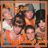 Live 1982 (Live)