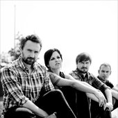 The Cranberries 2011