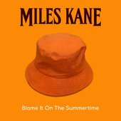 Blame It On the Summertime - Single