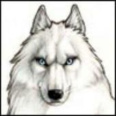Аватар для true_vyrex
