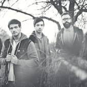 The Color Morale NEW PRESS PHOTO 2013 HQ PNG