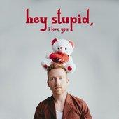 Hey Stupid, I Love You - Single