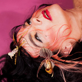 Björk by Maisie Cousins
