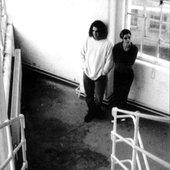 Flux (1997 - James Plotkin & Ruth Collins)