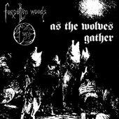 As the Wolves Gather/Sjel Av Natten