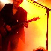 7ieben Live Gitarrist