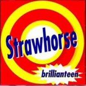 Avatar for Strawhorse