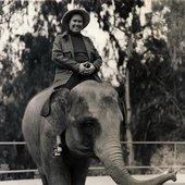 Oliveros on an elephant