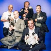 Faith no more with cats