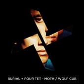"Burial & Four Tet \""Moth / Wolf Cub\"" Artwork Idea"