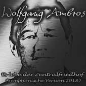 Es lebe der Zentralfriedhof (Symphonische Version 2018) - Single