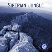 Tunguska Electronic Music Society - Siberian Jungle Vol.2