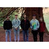 redwooduk
