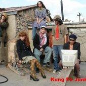 Kung Fu Junkie