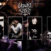 Band 2012 November