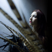 Chrysta Bell PNG