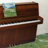 The Sophtware Slump ….. on a wooden piano