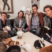 guster & animals (friends)