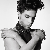 Prince - By Herb Ritts.png