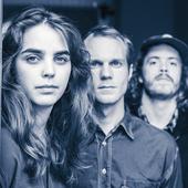 Slowgold band