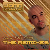 Never Fade Away (The Remixes)
