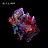 FABRICLIVE 86: My Nu Leng