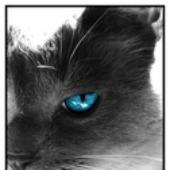 Аватар для pevgeniy