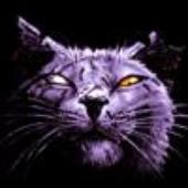 Аватар для DocuchRUS