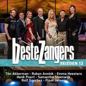 Beste Zangers Seizoen 12 (Aflevering 8 - Duetten)