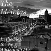 In the Flesh (The New Australian Mix)