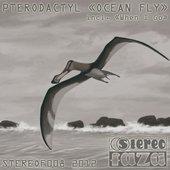 Ocean Fly - Single